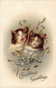 Two Christmas Cats c1910 ae108 International postcard