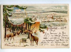 240534 HUNT Oberhof Jagdschloss DEER Vintage LITHO postcard
