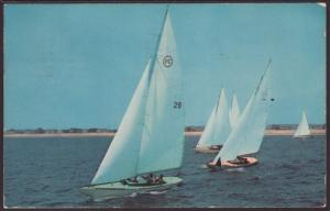 Sailing Postcard BIN