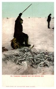 Alaska  Ice Fishing for  Tomcod  on the Bering Sea