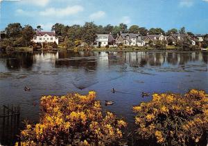 Scotland Tannoch Loch Milngavie Dunbartonshire