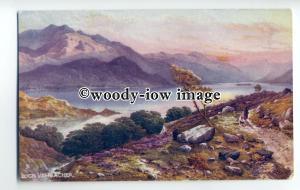 ar0399 - Heath at Loch Vennacher - Artist - Edwin.A.Penley -  Postcard - Tuck's