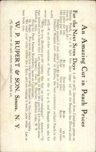 Seneca NY WP Rupert & Son Peaches c1910 Postcard myn