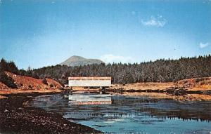 Afognak Island Alaska~Afognak US Navy Covered Bridge~Destoryed 1964~1970 PC