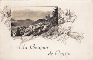 Switzerland Un Bonjour de Leysin Photo
