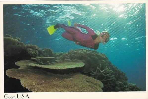 Guam Scuba Diving Snorkeling Beautiful Coral
