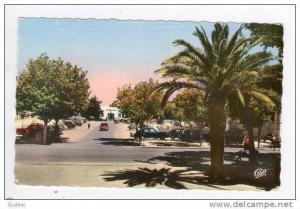 RP  TLEMCEN, Algeria, 40-50s  Vue vers la Prefecture
