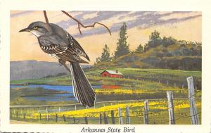 Arkansas State Bird~Mocking Bird~Farm Pond~Artist Ken Haag~1968 Postcard