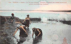 Doson, La Vie aux champs Tonkin Vietnam, Viet Nam Unused