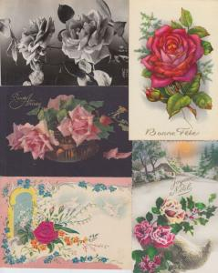 ROSES FLEURS FLOWERS 668 Cartes Postales Mostly Pre-1970