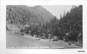 Along Scenic Redwood Highway California C-1910 RPPC Real photo Andrews 7631