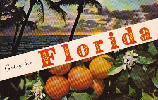 Greetings From Florida1969
