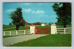 Lexington KY-Kentucky, Calumet Farm, Blue Grass Country, Chrome c1959 Postcard