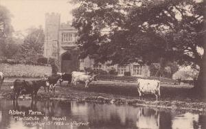 ST. IVEL , England , 00-10s ; Abbey Farm ; TUCK