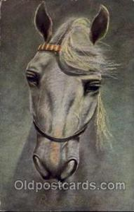 Artist Signed unknown,  Tuck's Publishing Horse Postcard Postcards