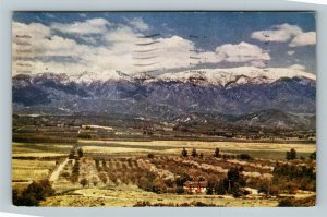 Angelus Oaks CA, Scenic San Gorgonio Mountain, Chrome California c1947 Postcard