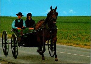 Postcard PA Pennsylvania Lancaster County Amish Horse Buggy Man Woman Unposted