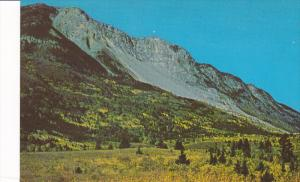 Turtle Mountain & Frank Slide from the East, Frank, Alberta, Canada, 40-60s