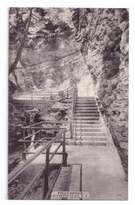 Watkins Glen NY Folly Bridge Vintage 1912 Acmegraph Postcard