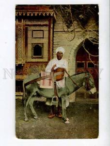 261232 EGYPT CAIRO Donkey boy Vintage Lichtenstern & Harari PC