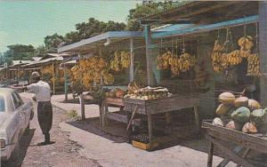Puerto Rico Tropical Fruit Market As Seen From El Yungue Rain Forest