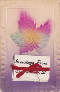 Canada New Brunswick St John Greeting From With Folder 1909
