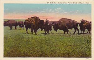 Buffaloes In The State Park Black Hills South Dakota Curteich