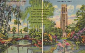 Florida Cypress Gardens and Singing Tower Curteich