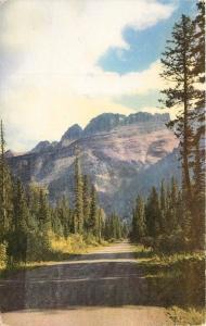 Going-to-the-Sun Highway Garden Wall Glacier National Park Montana 1951 Postcard
