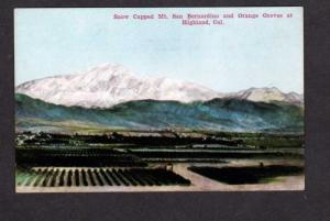 CA Mt San Bernardino Orange Groves Highland Calif California Postcard PC