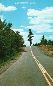 Marquette, Michigan, MI, Pine Tree, Highway, Chrome Vintage Postcard h3590