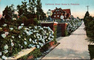 California Typical Street Scene In Midwinter 1910