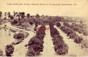 LAKES STELLA and ARIANA, BAYNARD GROVE IN FOREGROUND, AUBURNDALE, FL