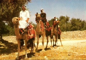 Israel Cavaliers De Chameaux Travellers On Camels Ships Of The Desert&q...