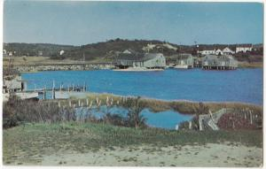 Cape Cod Oyster Houses and Fish Sheds, unused Postcard