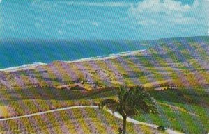 Barbados St Peter View From Cherry Tree Hill 1957