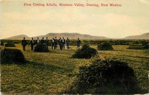 1910s Postcard; First Cutting Alfalfa Mimbres Valley Deming NM Agriculture Luna