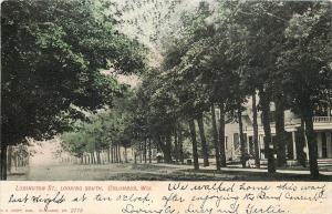 Columbus Wisconsin~Ludington Street Homes~man on Sidewalk~Dirt Road~1908