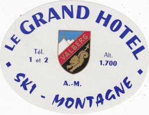 Switzerland Montagne Grand Hotel Vintage Luggage Label sk4174