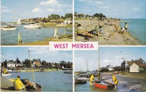 Post Card Essex West Mersea 4 views