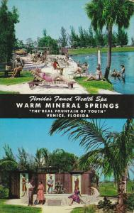 Warm Mineral Springs, Spa, Fountain of Youth, VENICE, Florida, 40-60´s