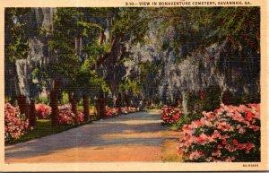 Georgia Savannah View In Bonaventure Cemetery Curteich