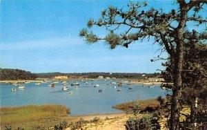 Ryders Cove Chatham, Massachusetts Postcard