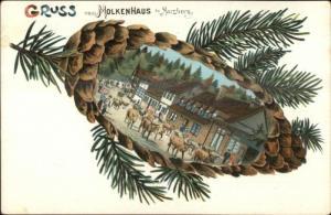 Gruss Aus vom Mokenhaus bei Harzburg Germany Pine Cone Border Postcard