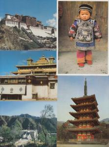 CHINE CHINA 241 Cartes Postales Mostly 1960-2000