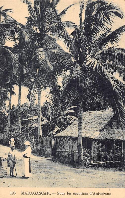 Africa Madagascar Sous les cocotiers d'Anivorano