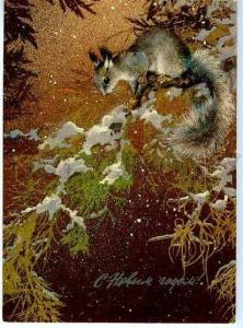 127631 SQUIRREL on X-MAS Tree by ISAKOV old NEW YEAR Russia