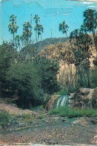 Djibouti Postcard Baukouale waterfall