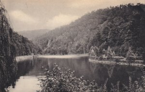 Near WILLIAMSPORT, Pennsylvania, PU-1916; A Pool In Mosquito Valley