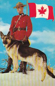 Canada Officer with Dog Royal Canadian Mounted Police